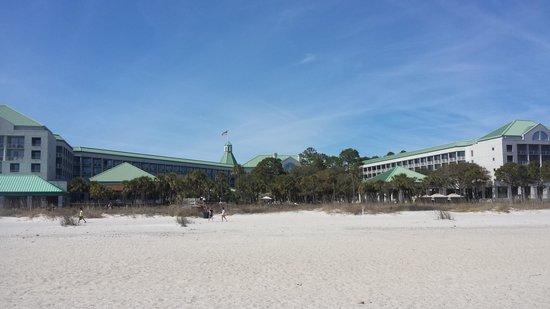 The Westin Hilton Head Island Resort & Spa : Hotel View from the Beach