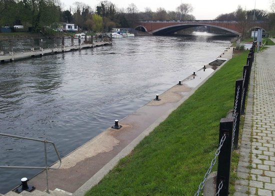 The Runnymede on Thames: Thames from outside hotel