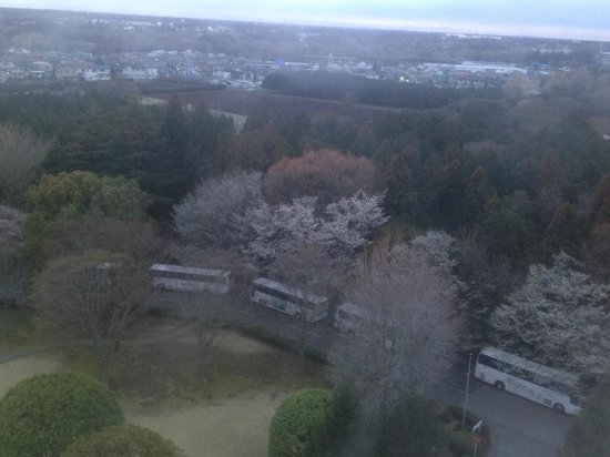 Radisson Hotel Narita: Dawn breaking, from my room.