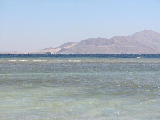 Baron Resort Sharm El Sheikh: На пляже