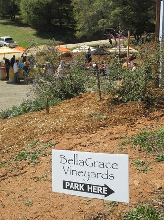 BellaGrace Vineyards: On nice days the tasting room is outside.