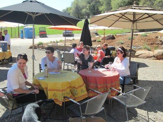 BellaGrace Vineyards: Great place for a picnic.