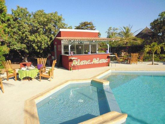 Domaine de la Mangrove : Le bar et la piscine