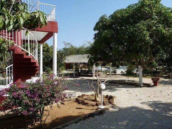Domaine de la Mangrove : Vue générale