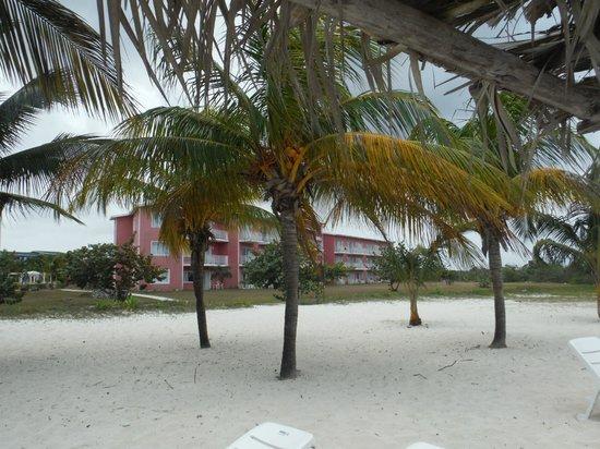 Hotel Playa Coco : vue de la plage