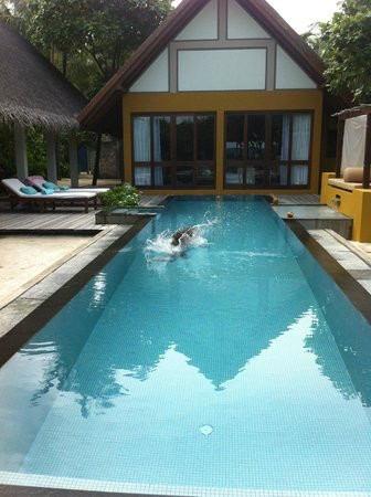 Four Seasons Resort Maldives at Landaa Giraavaru: Our pool