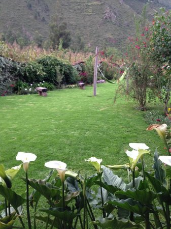 The Green House Peru: 12