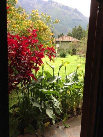 The Green House Peru: 9