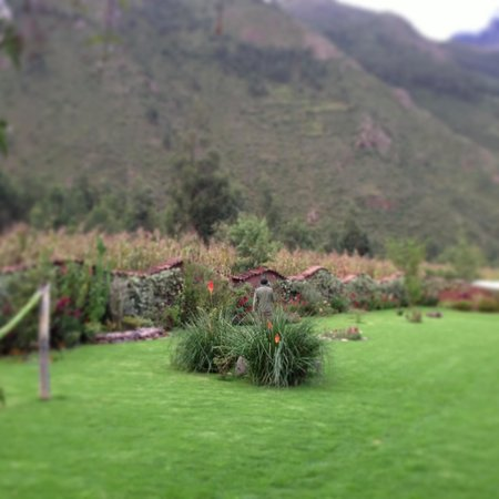 The Green House Peru: 10