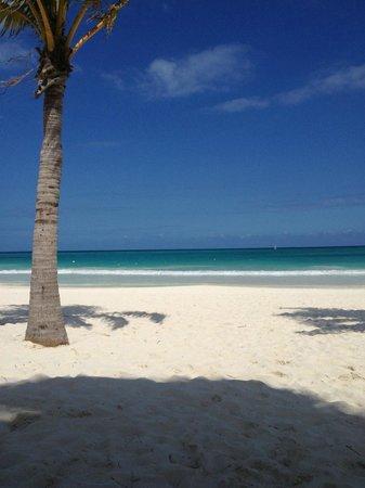 Secrets Maroma Beach Riviera Cancun The Most Beautiful In World