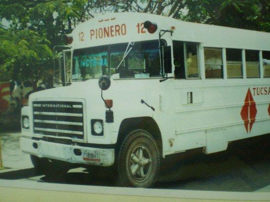 Quinta Avenida: Tipico autobus de playa del carmen