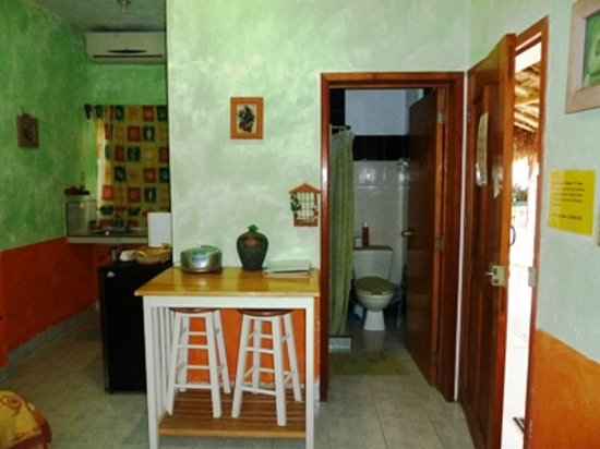 Amigos Hostel Cozumel: Avocado room kitchen and bath
