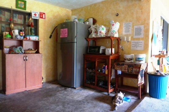 Amigos Hostel Cozumel: Kitchen with many appliances  Azul eating