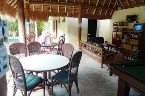Amigos Hostel Cozumel: Under large palapa living area