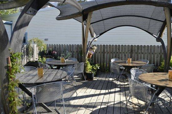 BlueBelle Bistro & Beanery: Sunny garden patio