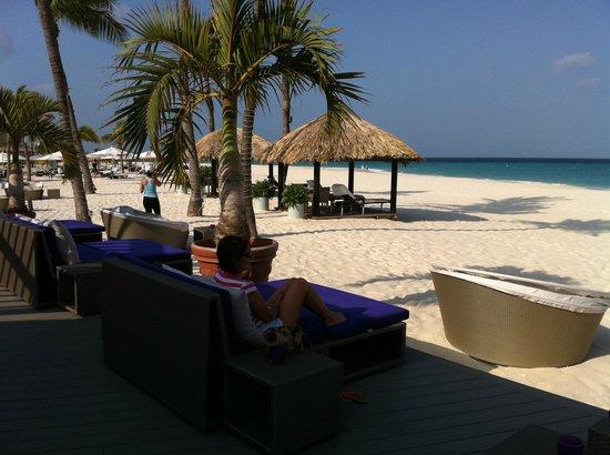 Bucuti & Tara Beach Resort Aruba: Bar e praia do hotel