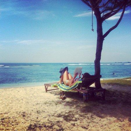 Desu de Bali Surf - Surfing Courses: girlfriend reading..while boys go surfing :) love bali holiday