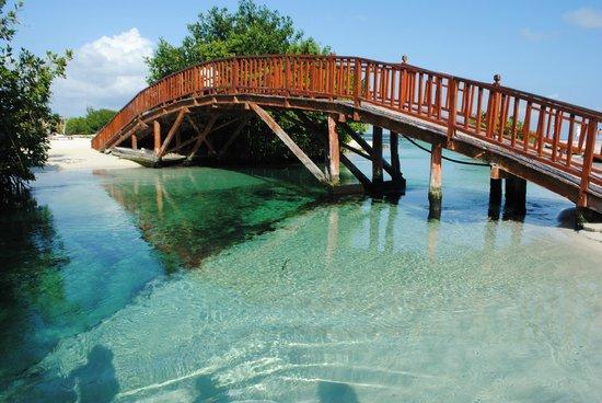 Hacienda Tres Rios: Bridge Crossing Over River
