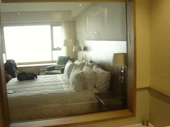 Arakur Ushuaia Resort & Spa: habitación desde el yacuzzi del baño