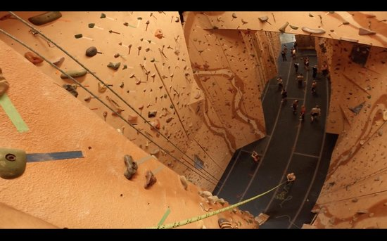 Earth Treks Climbing Center: Top of the wall