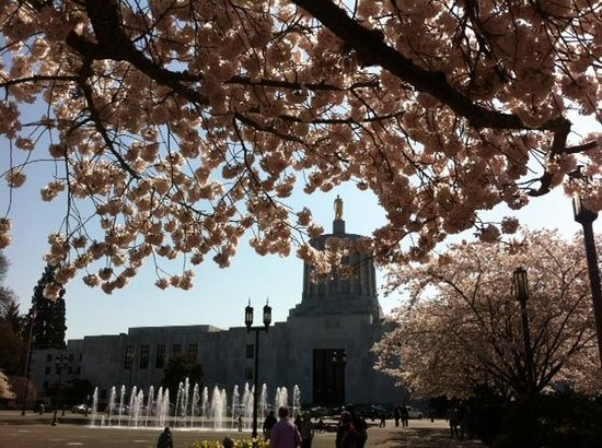 Oregon State Capitol : Golder pioneer through cherry blossoms