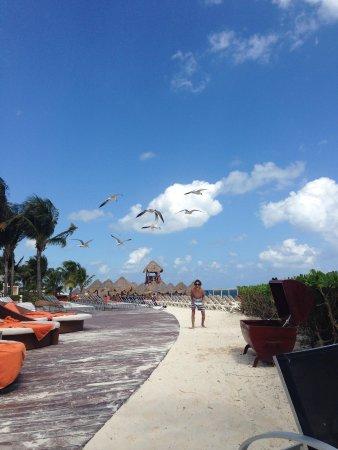 Dreams Riviera Cancun Resort & Spa: Con comida hacia la playa