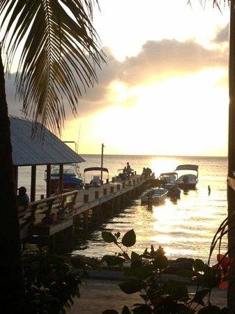 Splash Inn Dive Resort: Beautiful sunsets every night