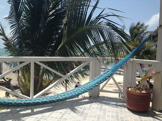 Conch Shell Inn: Beachfront room with a view!