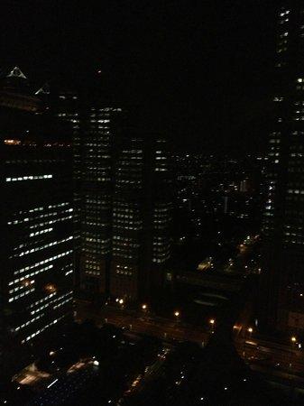 Keio Plaza Hotel Tokyo: Excelente vista de la ciudad
