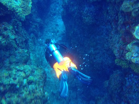 Dreamtime Dive Center : Divemaster Stephan leading the way