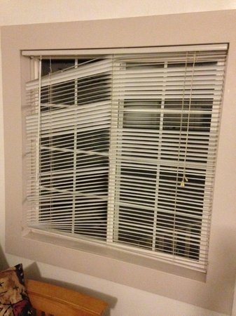 Woodland Villa Country Cabins: Broken Blinds