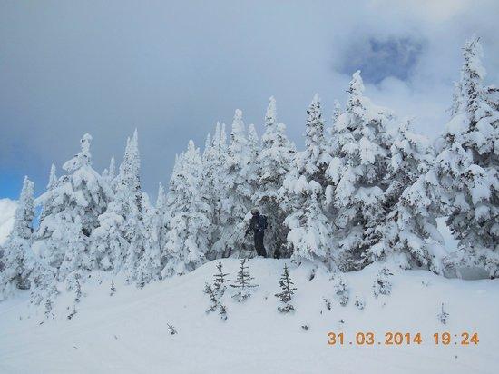Nancy Greene's Cahilty Hotel & Suites: In Sun Peaks we love snow !