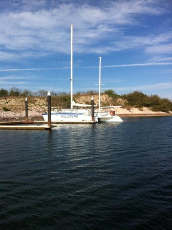 El Cid Marina Beach Hotel: Deer Island excursion catamaran if booked through resort