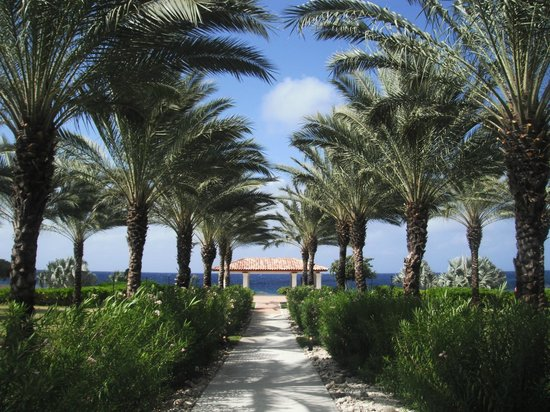 Santa Barbara Beach & Golf Resort, Curacao : Beautiful grounds - lookout area