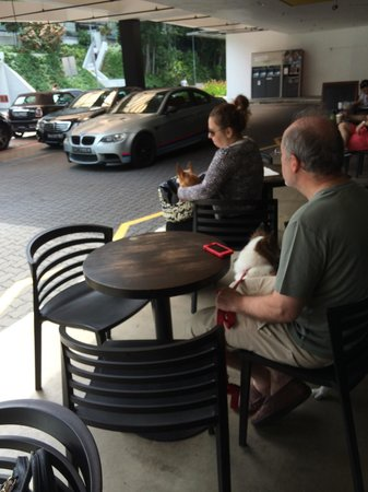 Nassim Hill Bakery: Dog lovers and drivers
