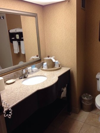 Hampton Inn Horse Cave: Bathroom