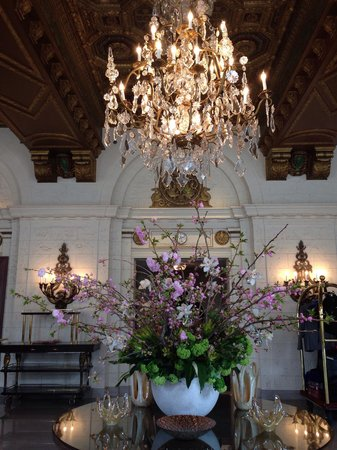 The St. Regis Washington, D.C.: Beautiful flower in the lobby