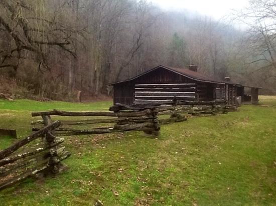 Charit Creek Lodge: guest cabins at Charit Creek