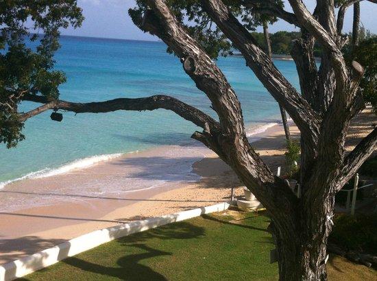Treasure Beach : View