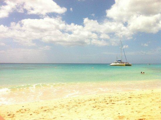 Treasure Beach : Beach
