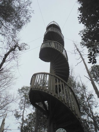 Adventures Unlimited Outdoor Center: The final zip tower to climb.