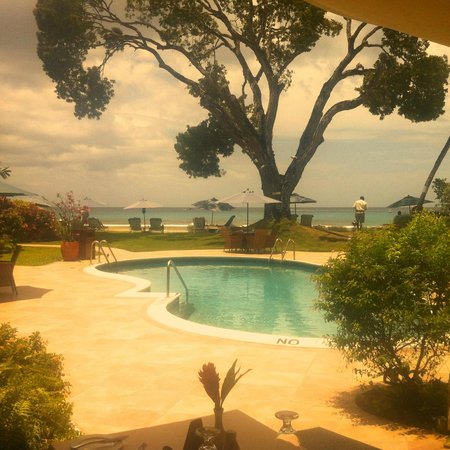 Treasure Beach : pool/beach/garden