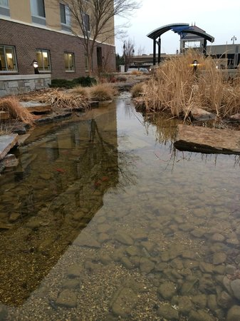 Fairfield Inn & Suites Wichita Downtown: Stream in the back