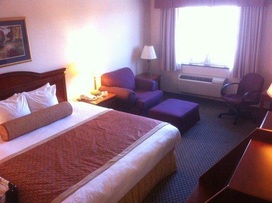 Best Western Plus Burlington Inn & Suites : Single Bed (front highway facing)