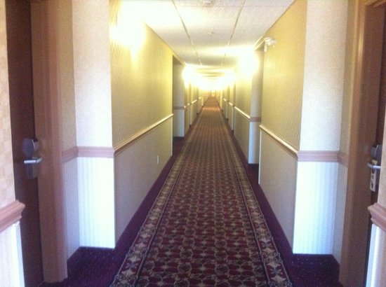 Best Western Plus Burlington Inn & Suites : Hallway