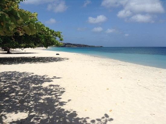 Radisson Grenada Beach Resort : Grand Anse Beach