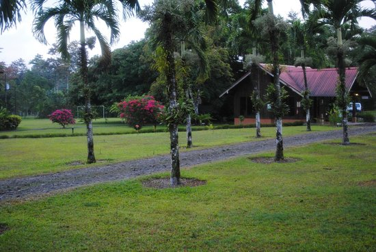 Eco Arenal Hotel : Grounds