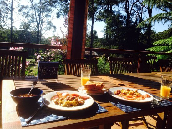 Bilpin Springs Lodge: Breakfast with nice farm view