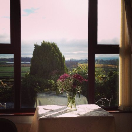 Valley View Country House B & B: View from the dining room