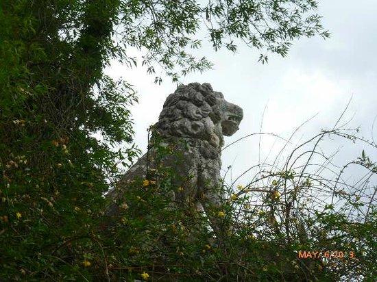 Castello di Montegufoni : THE LION STANDS GUARD!